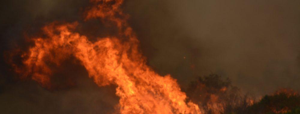 Batemans Bay Bushfire Catastrophe December 31 2019