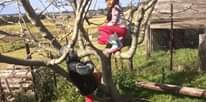 Tree climbing- must start from somewhere