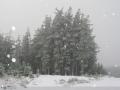 20050623jd62_precipitation_rain_near_oberon_nsw