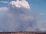 Pyrocumulus Clouds