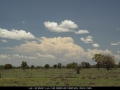 20071208mb02_humilis_near_coonamble_nsw