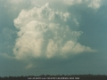 19990129jd10_cumulonimbus_calvus_schofields_nsw