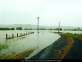20010202mb04_flood_pictures_eltham_nsw