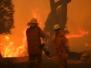 Bushfires Wildfires