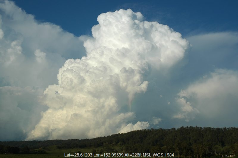 20051025mb38_rainbow_pictures_kyogle_nsw