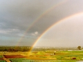 19980814jd01_rainbow_pictures_schofields_nsw