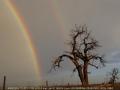 20050603jd02_rainbow_pictures_garden_city_kansas_usa