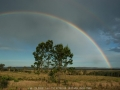 20061111mb31_rainbow_pictures_whiporie_nsw