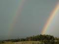 20061214mb61_rainbow_pictures_mcleans_ridges_nsw