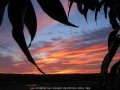 20050819jd07_sunrise_pictures_schofields_nsw