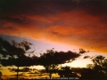 19931122jd02_sunset_pictures_schofields_nsw