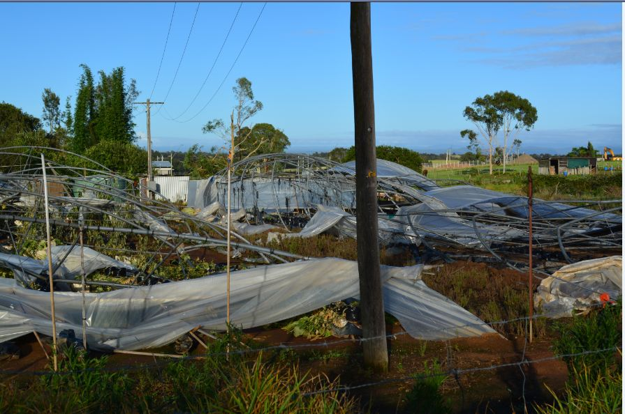 Storm aftermath 14/1/2016 and microbursts / downbursts