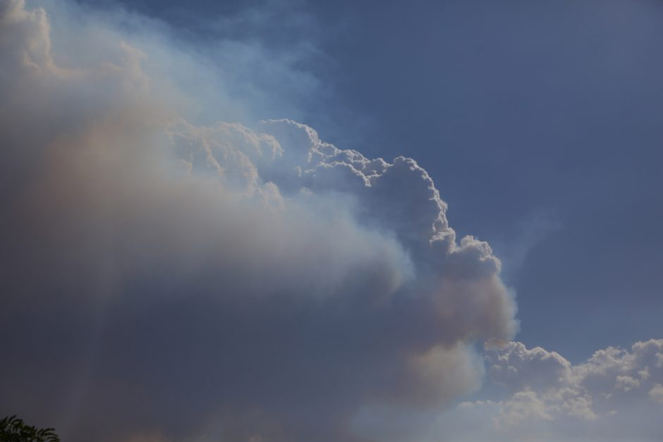 Pyrocumulus Time-Lapse of the Green Wattle Fire 4th January 2020 during record heat wave conditions