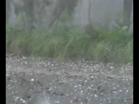 Smashed by giant hail to 7cm falls near Kempsey